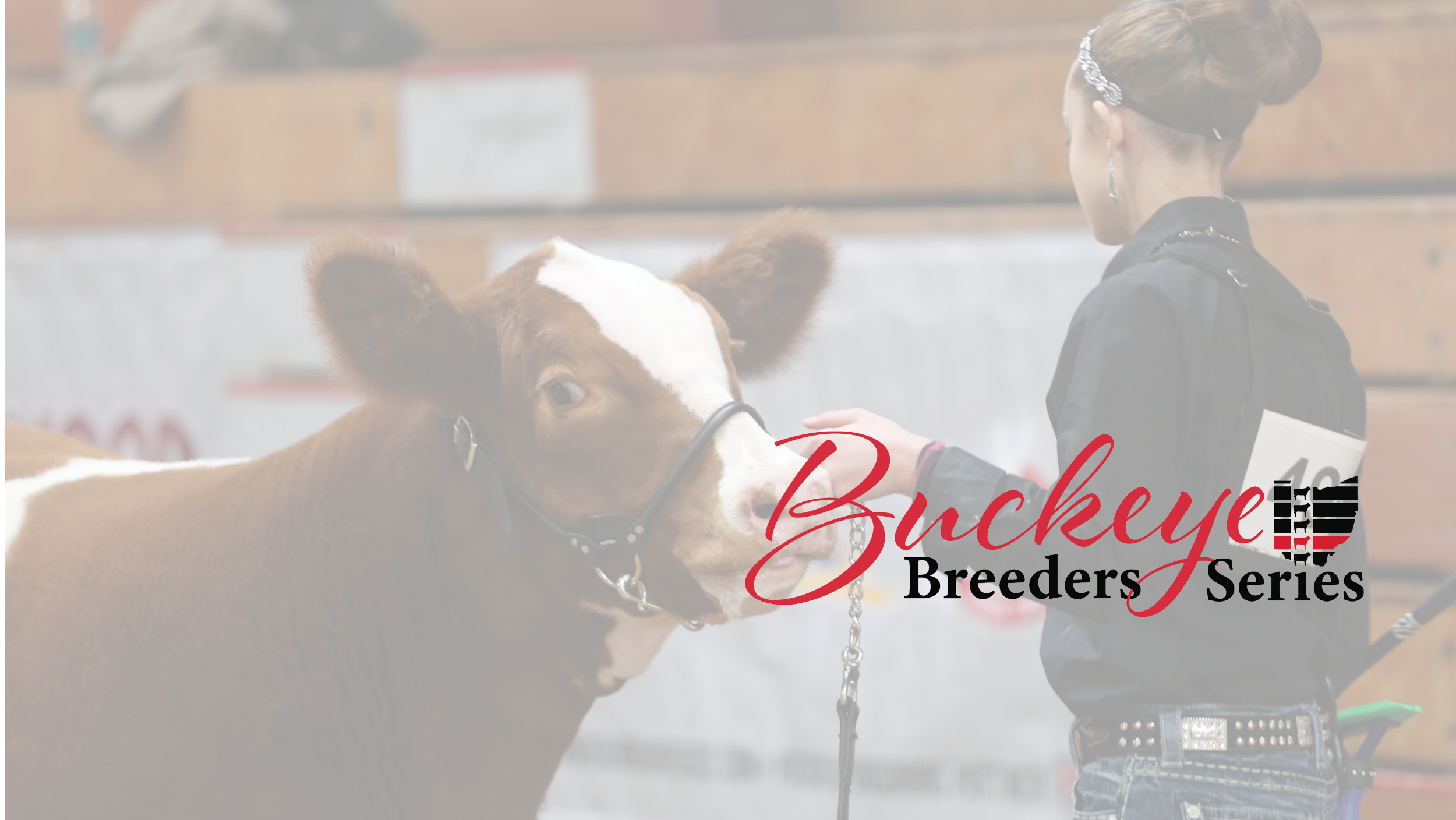buckeye breeders series header