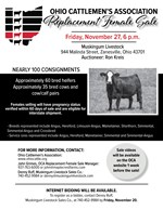 replacement female sale flyer